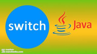 switch java